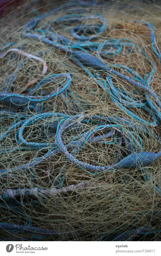 Blue Water Ocean Yellow Nutrition Food Coast Lake Weather Work and employment Rope Fish String Net Harbour Fishing (Angle)