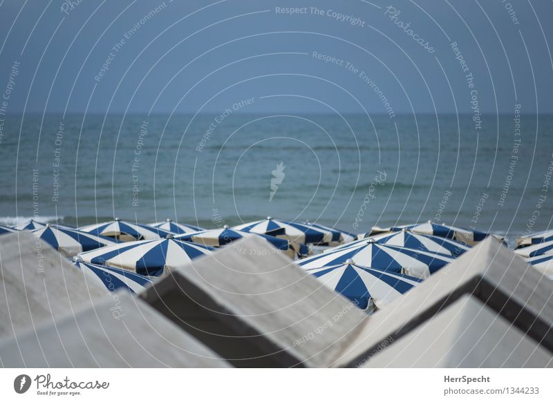 Vacation & Travel Blue Beautiful Summer Sun Relaxation Ocean Calm Beach Coast Gray Tourism Arrangement Waves Perspective Italy
