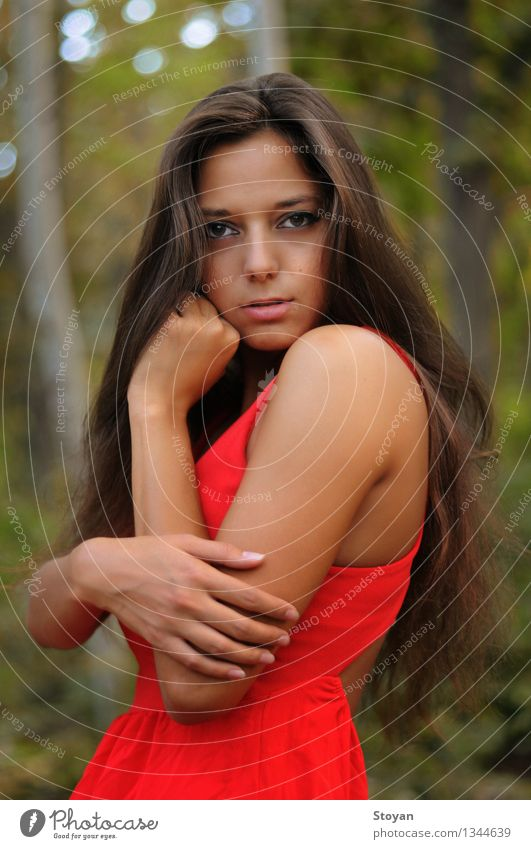 stylish model in red dress in the forest Feminine Young woman Youth (Young adults) Skin Head Hair and hairstyles Arm Hand 1 Human being 18 - 30 years Adults