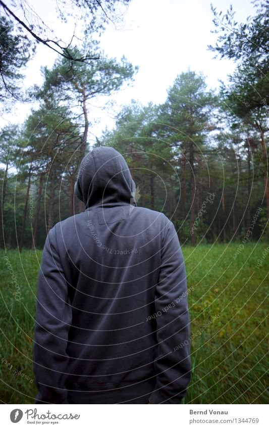 approaching in the autumn Human being Masculine Back 1 Authentic Hooded (clothing) Forest Folds Gray Forest walk Grass Growth Meditative Cold Cloth Autumn Arm
