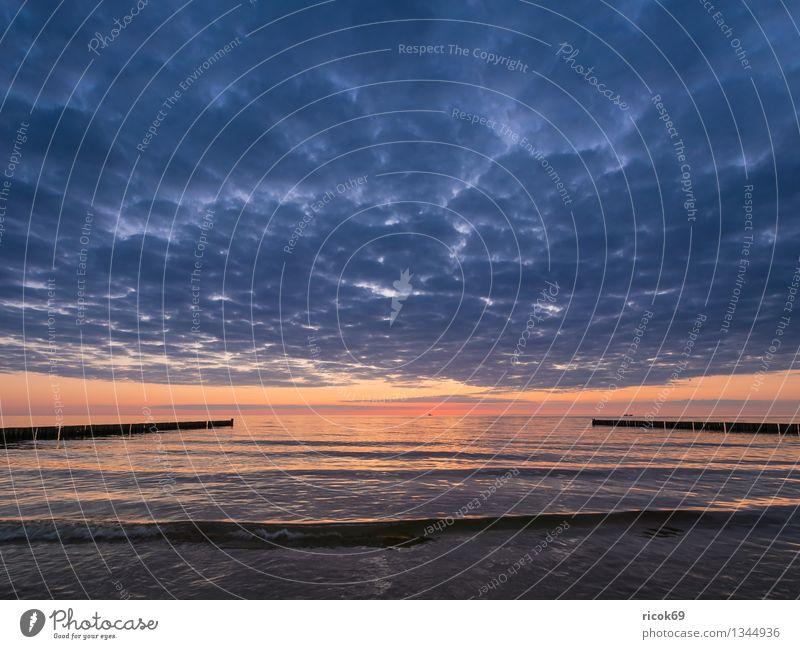 Baltic coast Sun Beach Ocean Water Clouds Coast Baltic Sea Romance Idyll Nature Vacation & Travel Calm Tourism Break water Sunset Fischland Darss