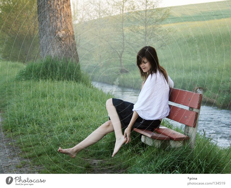 Woman Beautiful Meadow Emotions Dream Landscape Fog Bench Footpath Brook Morning Fairy tale Rag Scarf Dreamily Childlike