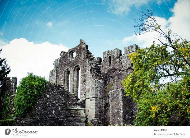 monasteries Environment Nature Landscape Sky Beautiful weather Tree Church Palace Castle Ruin Manmade structures Building Architecture Monastery Wall (barrier)