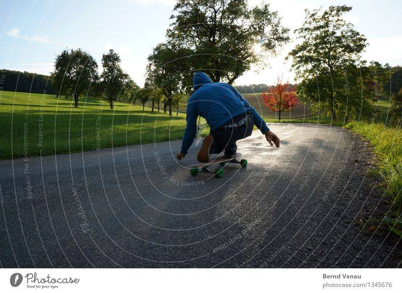 plaid Sports Emotions Moody Joy Asphalt Skateboard Skateboarding Downward Crouch Speed Hooded (clothing) Back-light Tree Meadow Sunlight Sky blue Green