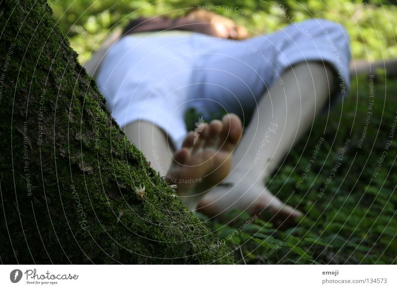 Woman Youth (Young adults) Tree Forest Relaxation Jump Death Spring Sadness Legs Facade Lie Murder Sacrifice Manslaughter