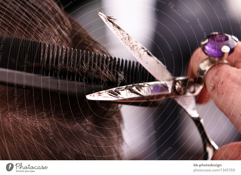 Close-up of a scissor of the hairdresser Style Beautiful Personal hygiene Hand Work and employment Advice brown black scissors barber hair coloring hair dryer