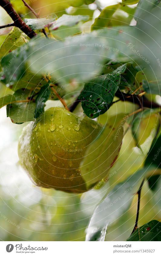 Does not fall far... Art Work of art Esthetic Apple Apple tree Tree of knowledge Apple harvest Apple juice Apple skin Apple plantation Green Fruit Mature