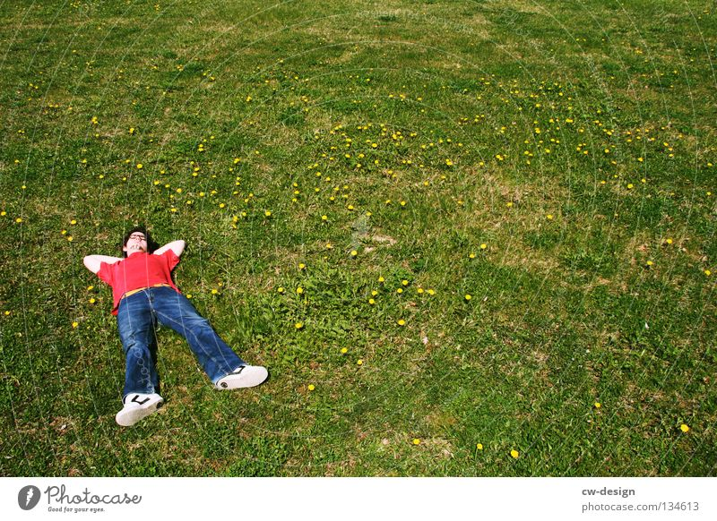 COME ON AND CHILL WITH ME II Relaxation Shadow Green Photographer Take a photo Red Sleep Grass Blade of grass Meadow Dandelion Fellow Man Masculine Flower