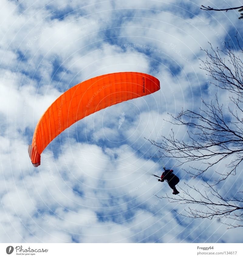 Scratch the curve.... Paraglider Air Clouds Pilot Black Schauinsland Bird Joy Sports Playing Extreme sports Flying Aviation Sky Blue Orange Wind Weather