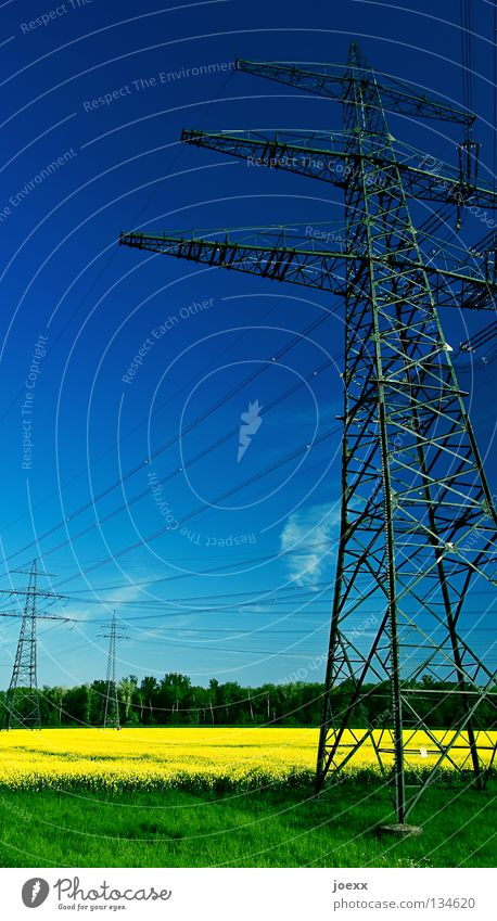 Sky Nature Blue Green Yellow Environment Landscape Spring Field Energy industry Electricity Agriculture Steel Electricity pylon Organic produce Transmission lines