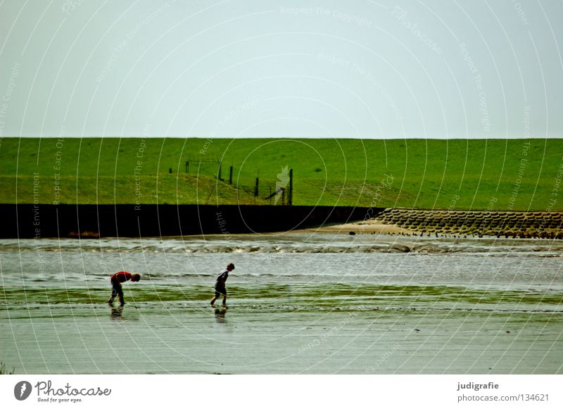 watt Mud flats Low tide Dike Meadow Green Child Search Playing Leisure and hobbies Vacation & Travel Coast Beach Environment Colour North Sea Sky Walking