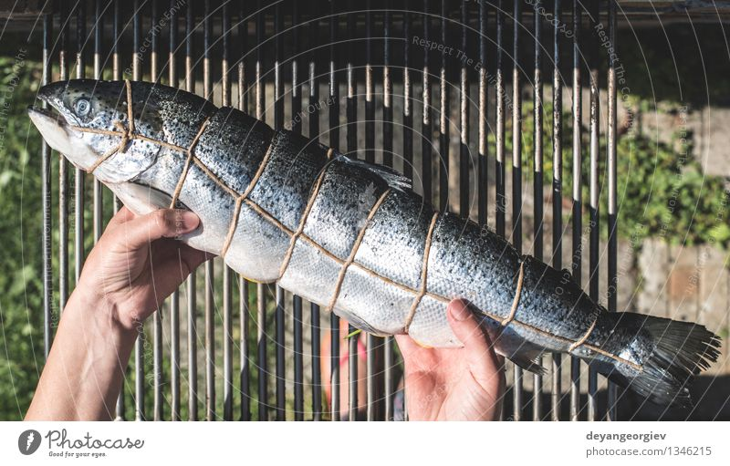 Raw salmon fish on grill. Meat Seafood Dinner Garden Fresh Pink Red Salmon Plank Cedar Fine Roasted Ready Cooking Exterior shot Close-up Fish Barbecue (event)