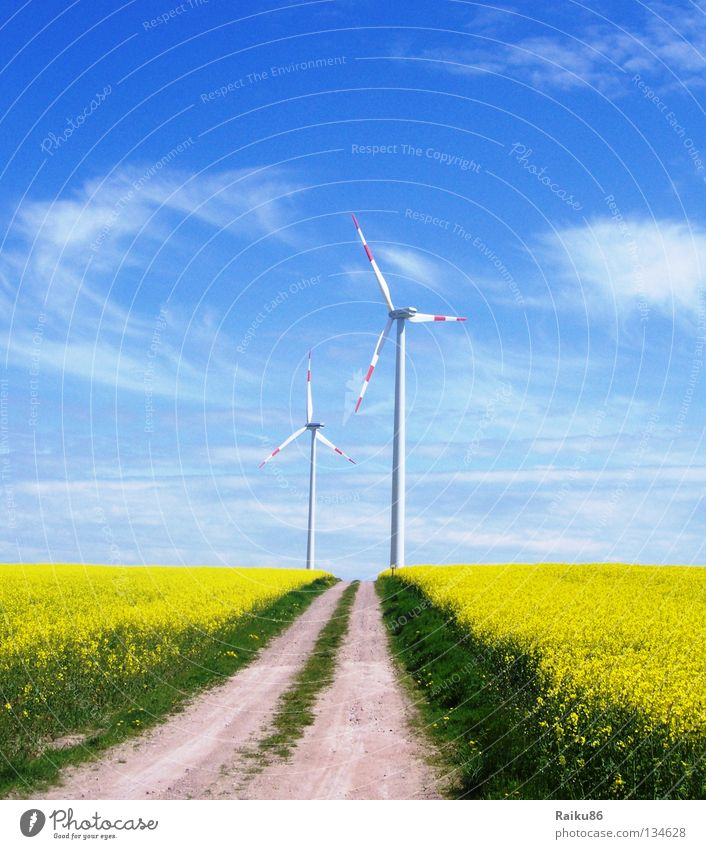 wind power Summer Sun Hiking Technology Energy industry Renewable energy Solar Power Wind energy plant Nature Landscape Air Sky Clouds Horizon Spring Field