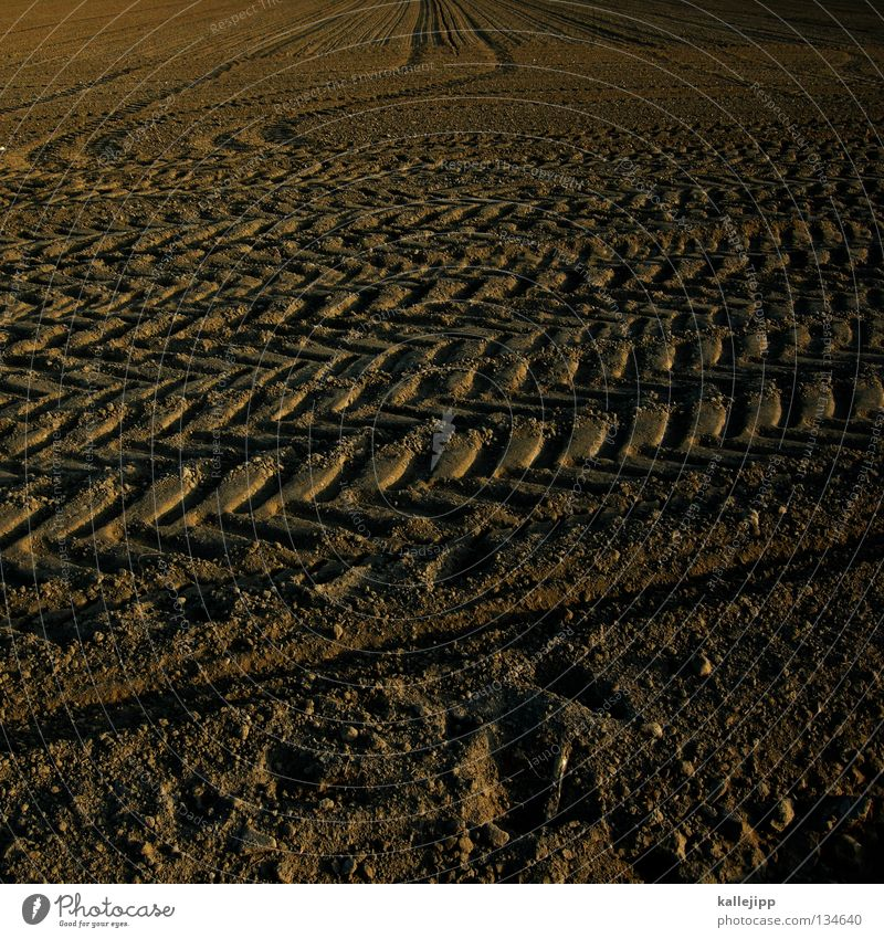 Landscape Far-off places Life Food Sand Stone Car Work and employment Rain Earth Field Perspective Technology Tracks Agriculture Dry