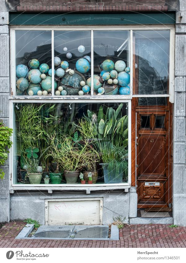 globalization Amsterdam Town House (Residential Structure) Building Window Door Decoration Collection Collector's item Funny Nerdy Retro Trashy Globe Pot plant