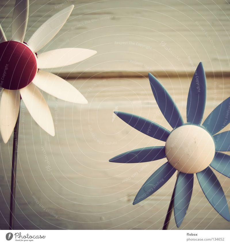 Colour Playing Movement Spring Garden Art Wind Energy industry Decoration Toys Infancy Passion Blow Rotate Pinwheel