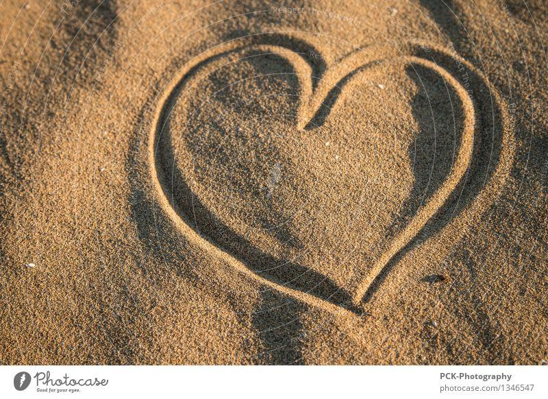 Heart in sand Nature Spring Summer Autumn Coast Beach Oasis Yellow Gold Emotions Sympathy Friendship Love Infatuation Loyalty Grateful Peace Lovely Sincere Sign