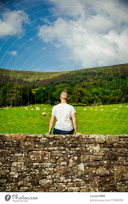 Human being Sky Vacation & Travel Youth (Young adults) Man Blue Green Relaxation Young man Calm Far-off places 18 - 30 years Adults Wall (building) Meadow Grass