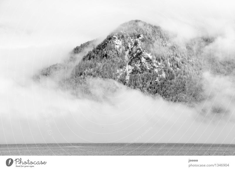 mountain of fog Nature Landscape Water Winter Fog Snow Alps Mountain Peak Snowcapped peak Cold Silver Calm Black & white photo Exterior shot Deserted