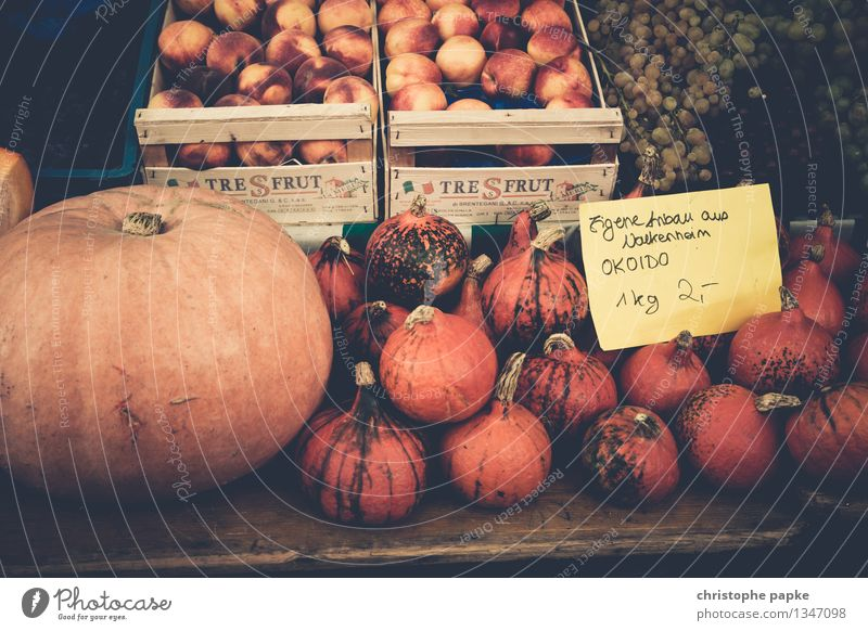 Pumpkins on market for sale Organic produce Food Nutrition Vegetarian diet Shopping Greengrocer Fresh Healthy Markets Vegetable Farmer's market Market stall