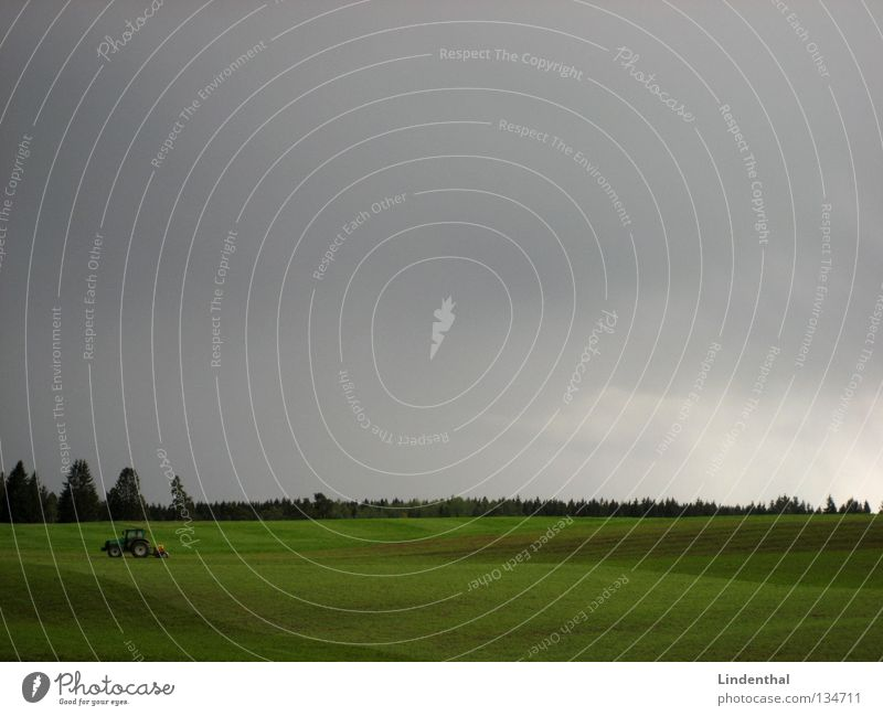 Sky Forest Work and employment Meadow Gray Field Agriculture Farmer Americas Pasture Tractor Roll