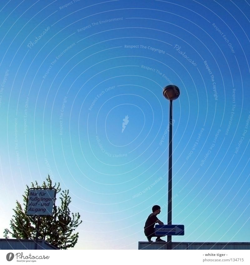 Human being Sky Blue White Green Tree Style Contentment Signs and labeling Stairs Arrow Lantern Barrier Pedestrian Blue sky Crouch