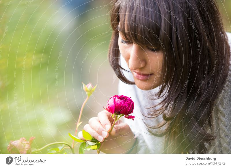 Human being Youth (Young adults) Plant Green Summer Young woman White Flower Hand Red Animal 18 - 30 years Face Adults Yellow Blossom