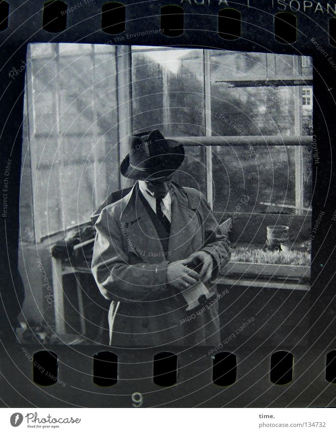 Man in a nursery Garden Masculine Adults Hand Plant Window Coat Tie Hat Glass Select Rotate Concentrate Puzzle Greenhouse Market garden Window pane Glas facade
