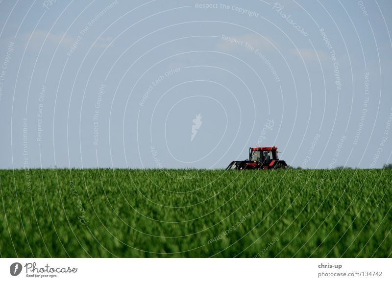 tractor, field, sky Tractor Field Agriculture Vegetable farming Organic farming Ecological Utility vehicle Beautiful Pure Tree Minimalistic Blue Green Brown