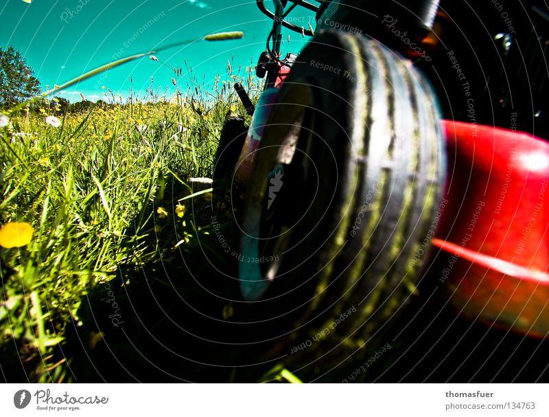 Formula 1 Summer Meadow Lawnmower Crash Mow the lawn Grass Short Loud Arrangement Clean Calm Deckchair Garden plot Front garden Leisure and hobbies Summerfest
