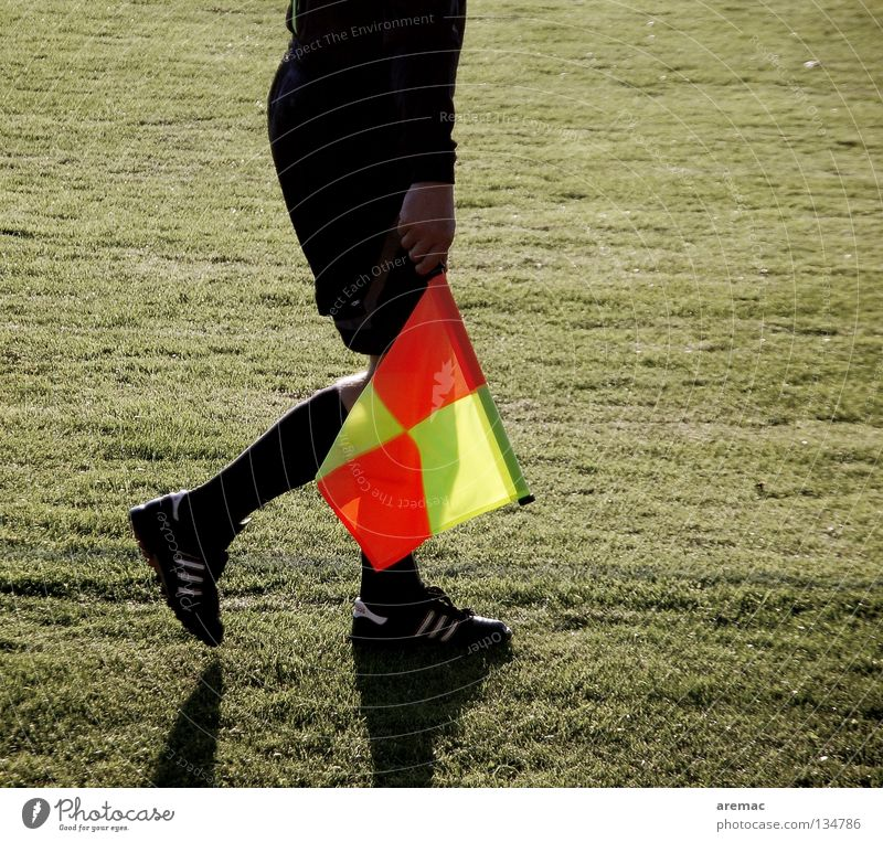 lineman Referee Linesman Footwear Clothing Flag Sporting grounds Football pitch Services Sports Playing Man Soccer Legs Lawn
