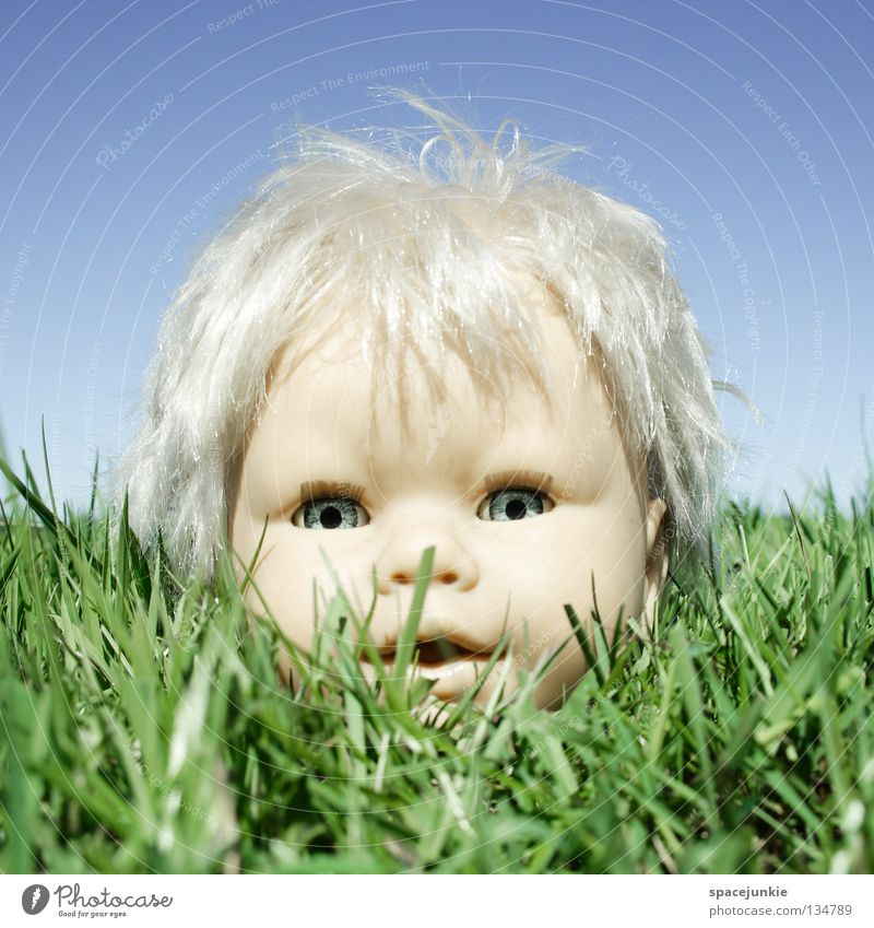 In the grass Grass Meadow Green Toys Threat Alarming Blonde Chucky Creepy Horror film Evil Sweet Cute Whimsical Headless Joy Nature Sky Blue Doll Eyes Fear