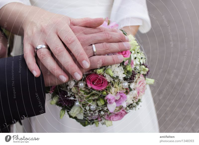 A bond for life Human being Woman Adults Man Couple Partner Life Body Arm Hand Fingers Ring finger 2 30 - 45 years Flower Bouquet Suit Wedding dress Jewellery