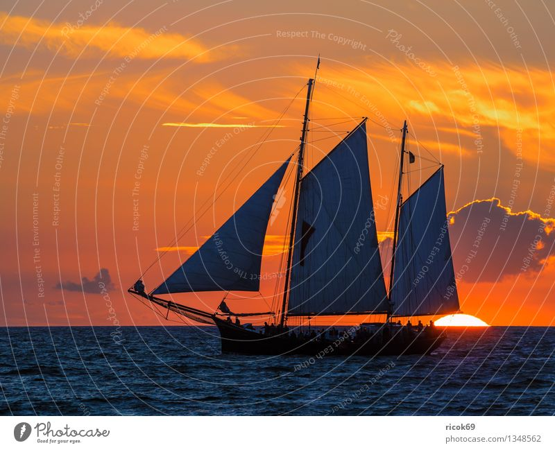 Hanse Sail Vacation & Travel Waves Sailing Water Clouds Coast Baltic Sea Ocean Sailing ship Watercraft Maritime Blue Romance Idyll Nature Tourism Tradition