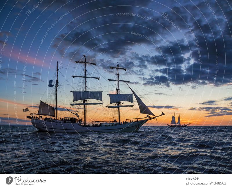 Hanse Sail Vacation & Travel Waves Sailing Water Clouds Coast Baltic Sea Ocean Sailing ship Watercraft Maritime Blue Adventure Tourism Tradition Windjammer
