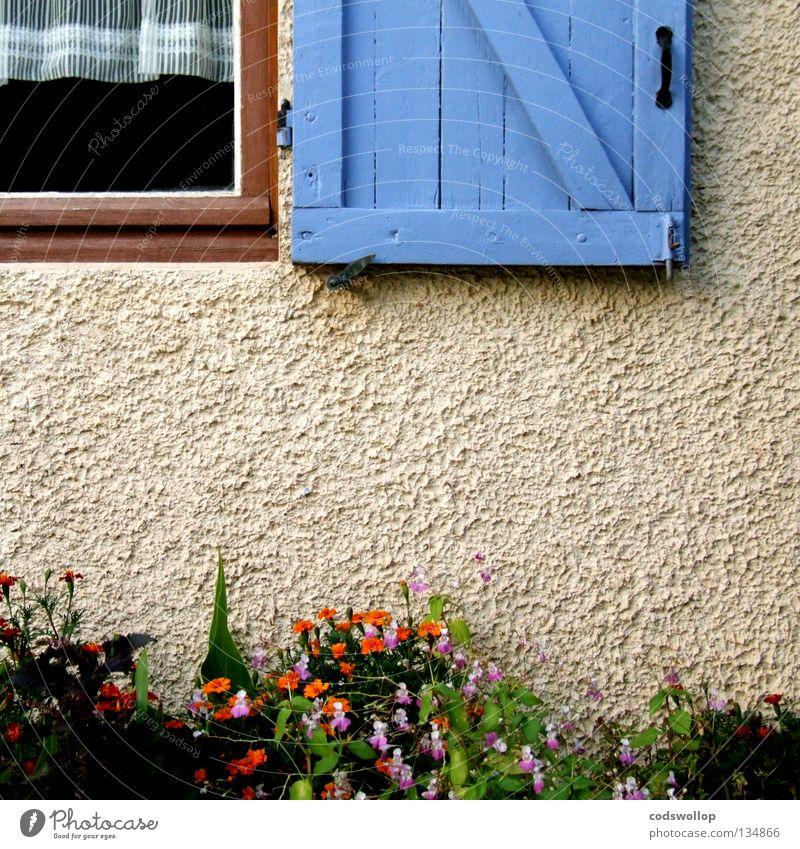 Blue Garden Orange France Drape Household Shutter Window frame Provence Hinge Dianthus