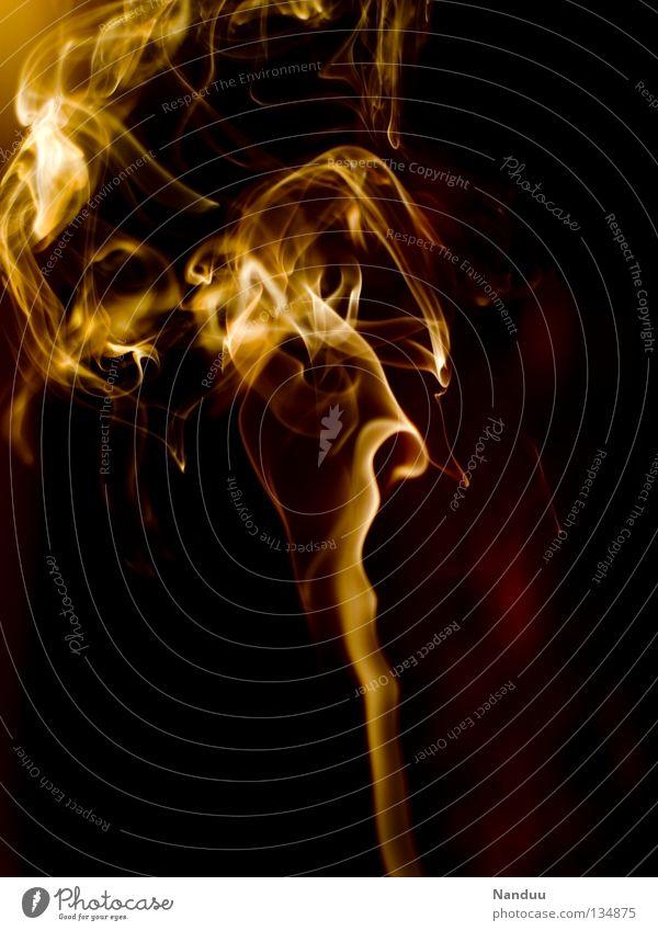 Red Yellow Dark Warmth Background picture Orange Wind Dangerous Threat Blaze Transience Idea Romance Hot Physics Delicate