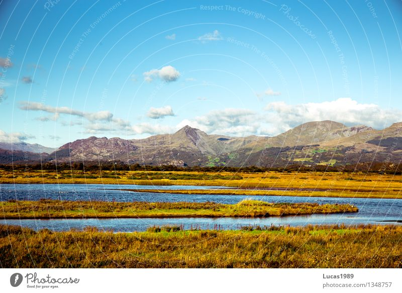 Sky Nature Vacation & Travel Plant Blue Water Sun Landscape Clouds Mountain Environment Yellow Meadow Grass Sand Rock