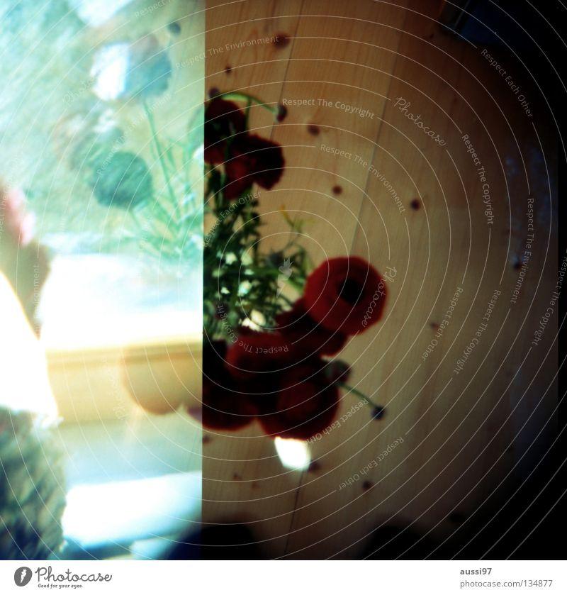 Bouquet Double exposure Medium format