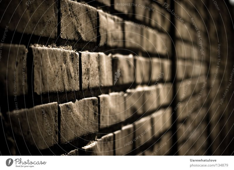 Old Loneliness Dark Cold Wall (building) Emotions Death Wall (barrier) Stone Facade Gloomy Safety Pain Barrier Brick Captured