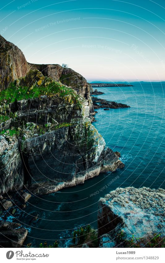 cliff Environment Nature Landscape Plant Water Sky Cloudless sky Climate Beautiful weather Bushes Moss Hill Rock Waves Coast Lakeside Bay North Sea Baltic Sea