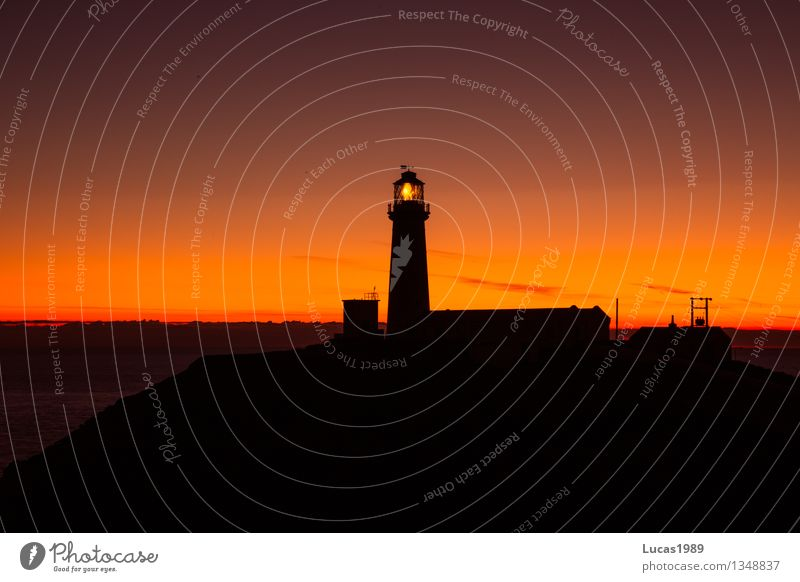 the light that guides Night sky Fishing village Port City Tower Lighthouse Dark Orange Red Black Illuminate Silhouette Road marking Ocean Coast Colour photo