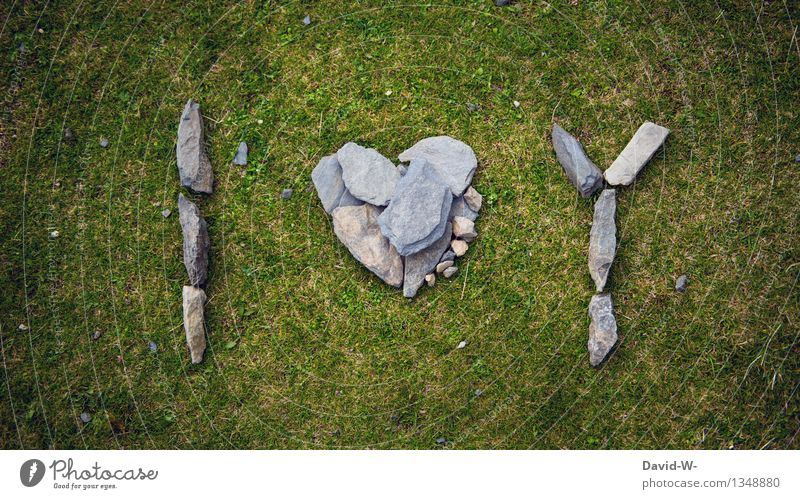 Nature Summer Environment Life Love Autumn Emotions Meadow Death Art Stone Characters Heart Romance Sign Eternity