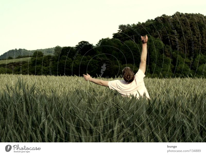 Human being Man Field To fall Grain Touch Sudden fall Stupid Wheat Doofus Right ahead Wheatfield Clumsy