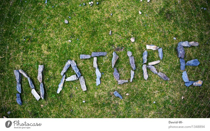 Nature Green Summer Landscape Calm Environment Autumn Meadow Grass Art Stone Contentment Power Energy Future Fantastic