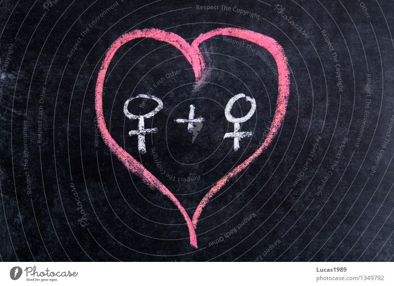 Same Love 2 Blackboard Chalk Human being Feminine Homosexual Young woman Youth (Young adults) Woman Adults Couple Partner Pink White Emotions Together