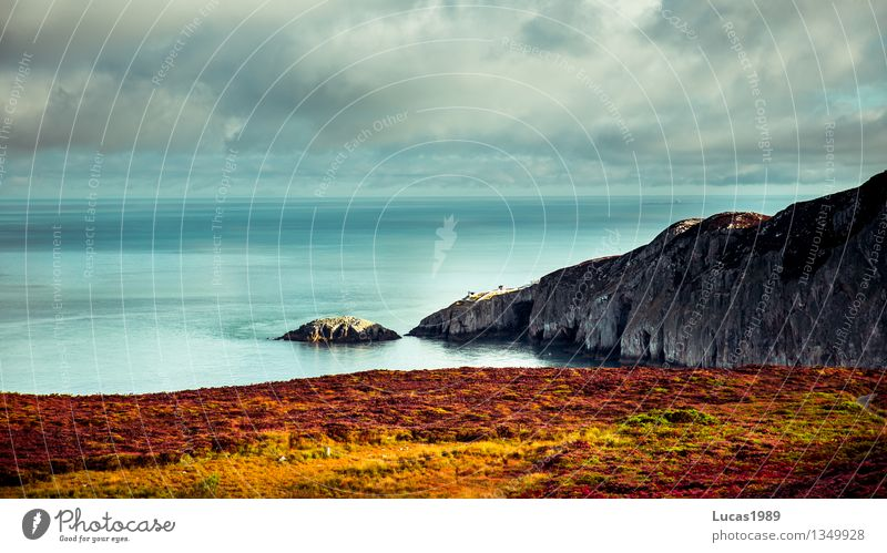 Sky Nature Vacation & Travel Plant Sun Ocean Landscape Clouds Beach Environment Meadow Grass Natural Coast Exceptional Rock