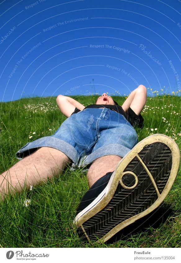wear off Sunbeam To enjoy Meadow Green Flower Daisy Dandelion Hill Summer Seasons Relaxation Sky Moody Footwear Yawn Joint Sleep Man sun sunshine Blue Mountain
