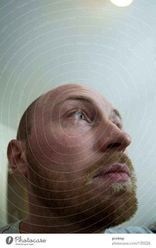 Human being Man Beautiful Joy Eyes Lamp Wait Nose Electricity Ear Observe Facial hair Expectation Attractive Distorted