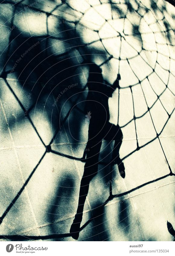 arachnoid Spider Playground Child spider's web urge to move superheroes Net black widow